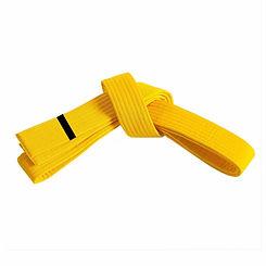 belt_yellow_1.jpg