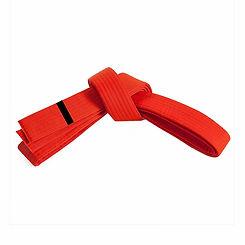 belt_orange_1.jpg