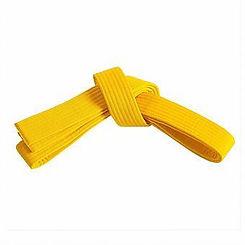belt_yellow.jpeg