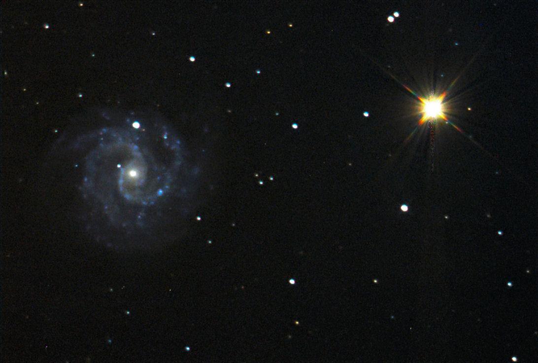 G_NGC3184