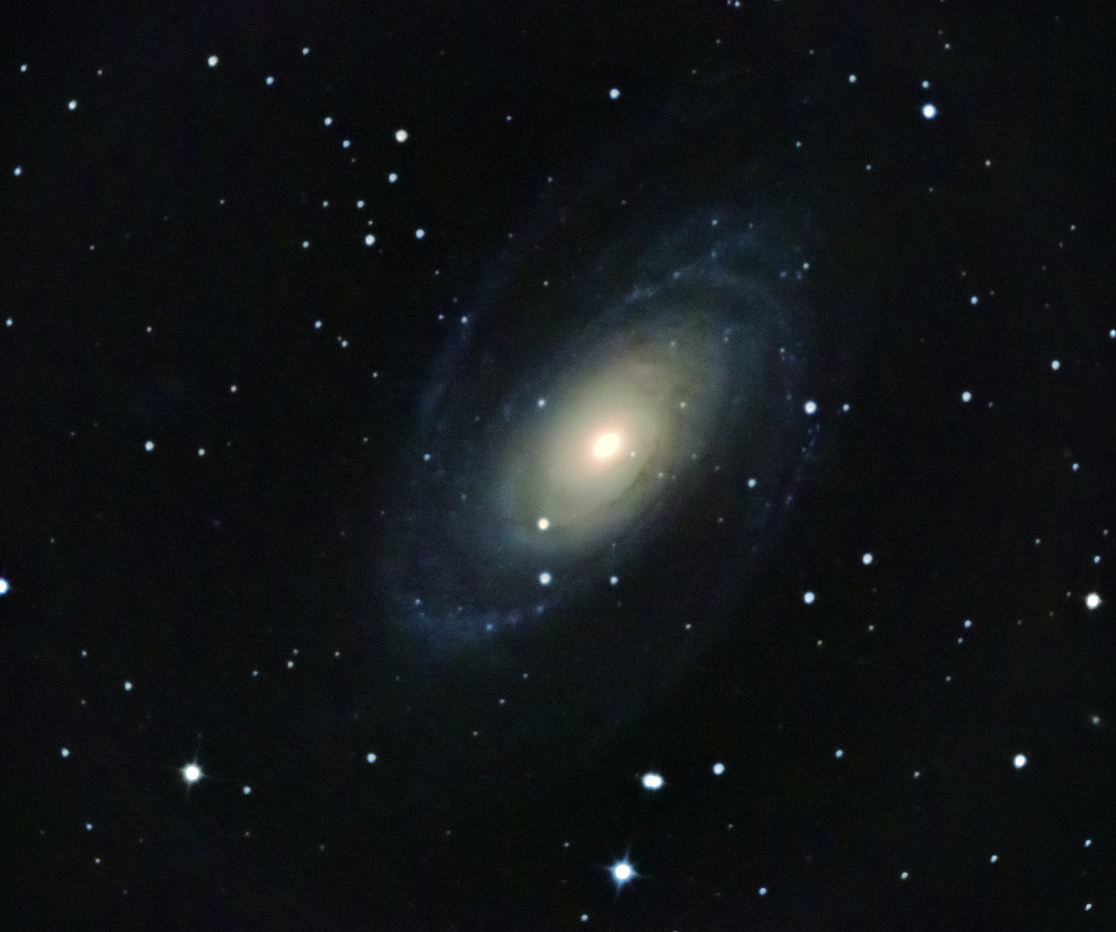 Galassia M81 in Ursa Major