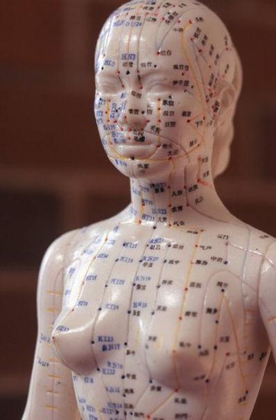Comment s'inscrire à la Formation Acupuncture Traditionnelle du Pôle de Therapeutes.