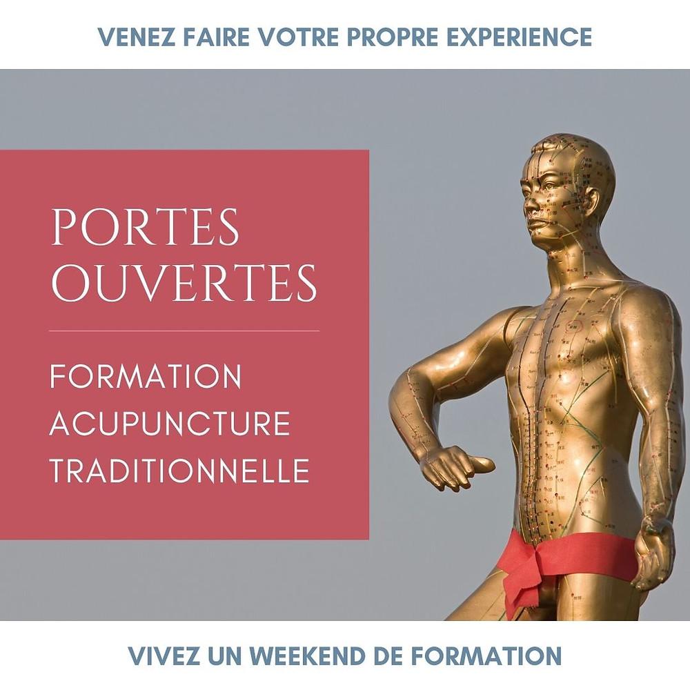 Portes Ouvertes - Formation Acupuncture Traditionnelle au Centre de Formation du Pôle de Thérapeutes.