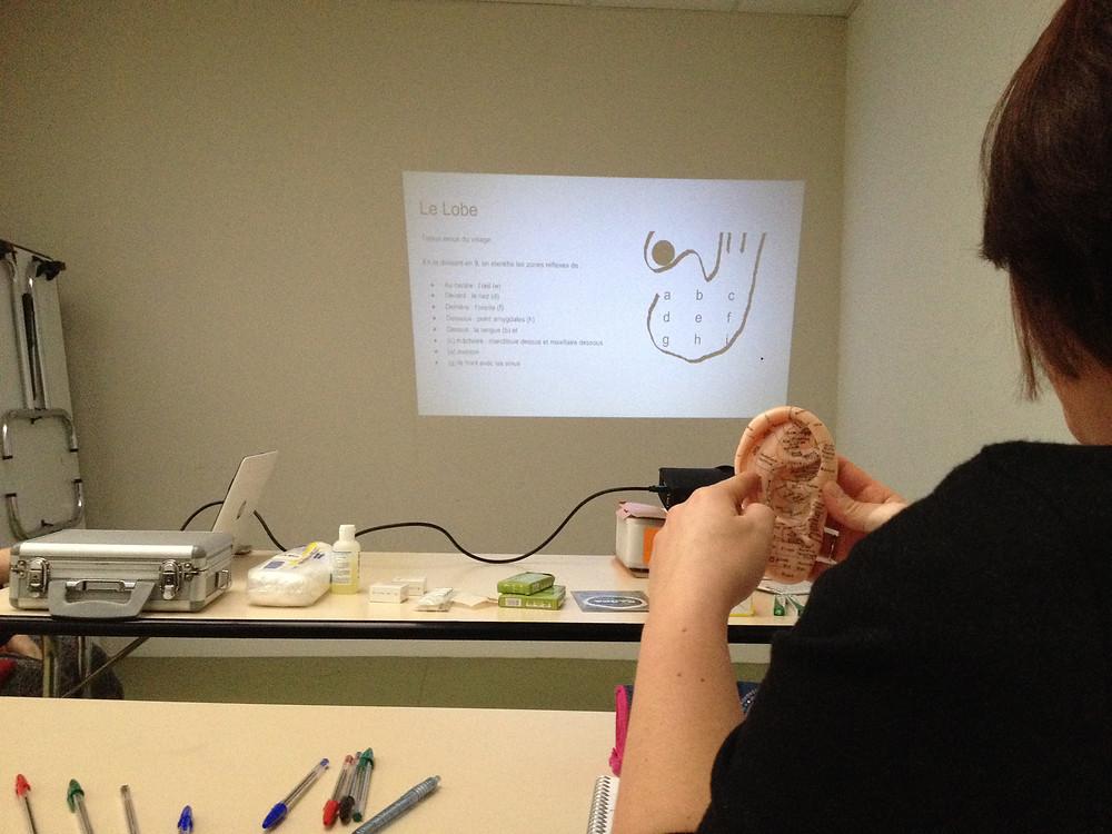 Formation Auriculothérapie de l'Ecole d'Acupuncture du Centre de Formation du Pôle de Thérapeutes
