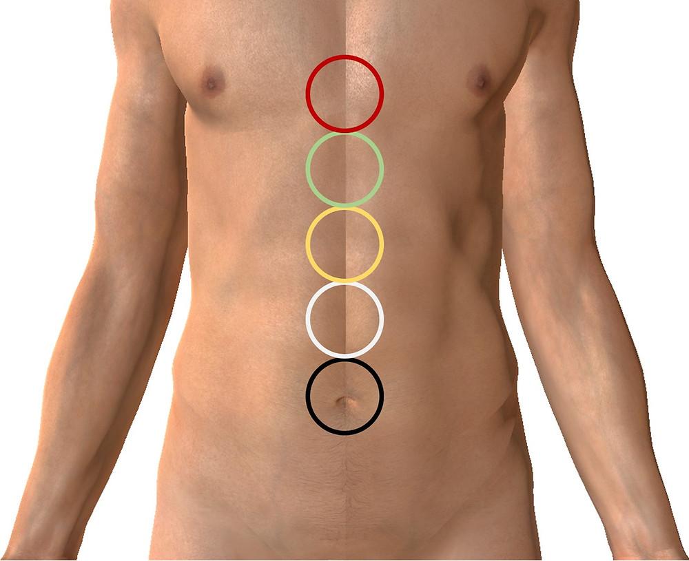 Zones et ordre des 5 Éléments de la palpation abdominale du Dr. Manaka.