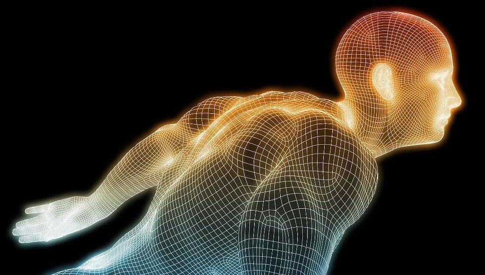 Formation Acupuncture Holographique