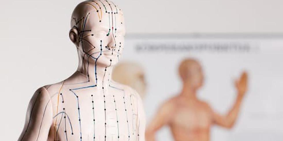 1e Paiement (1/4) : Diplôme Acupuncture Traditionnelle.