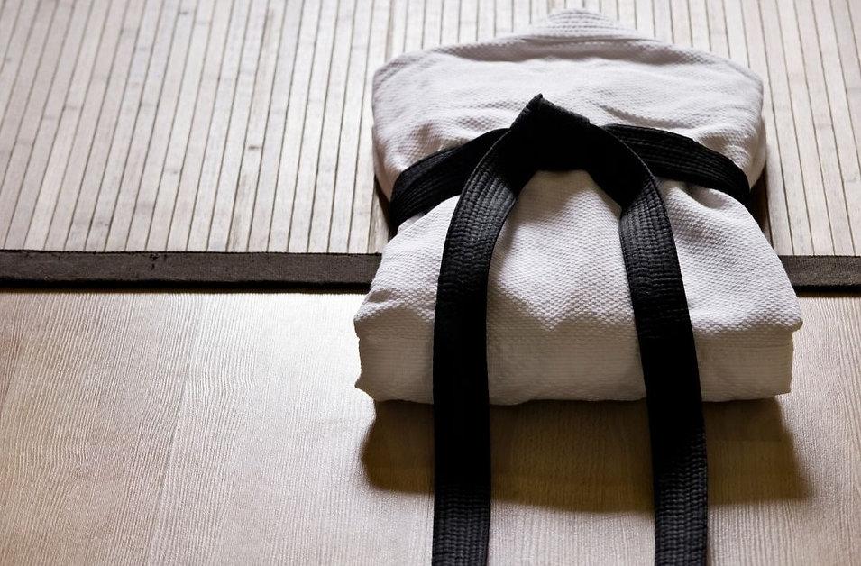 Formation Aikido Verbal au Pole de Therapeutes