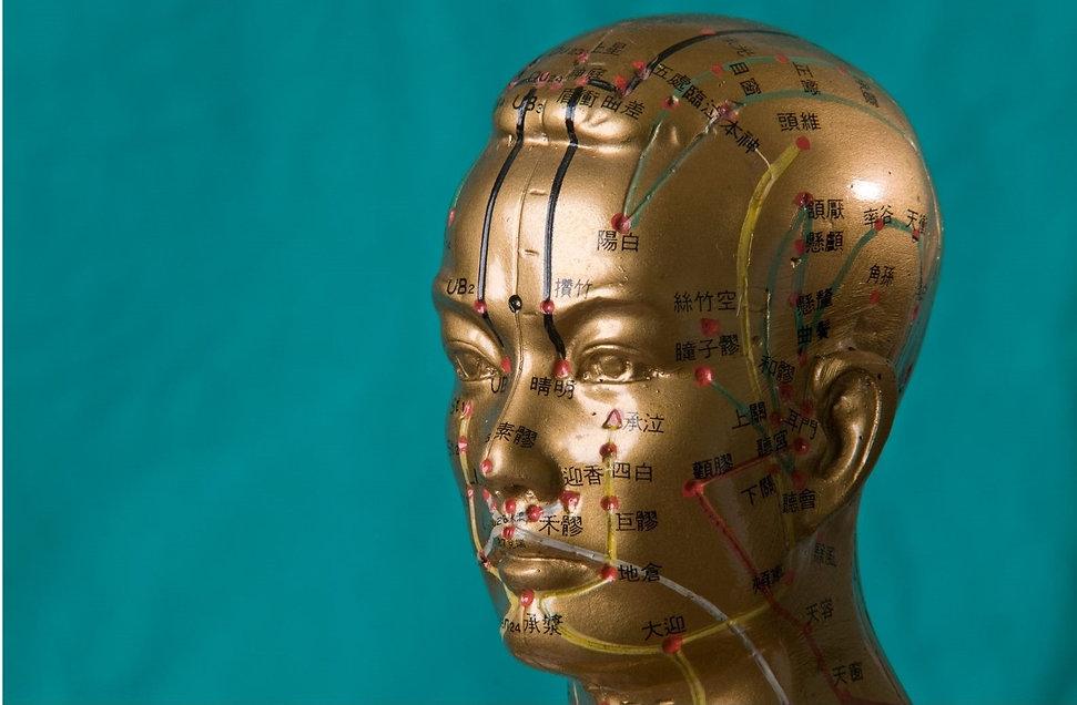 Quelle formation acupuncture ? Comment choisir son Ecole d'Acupuncture ?