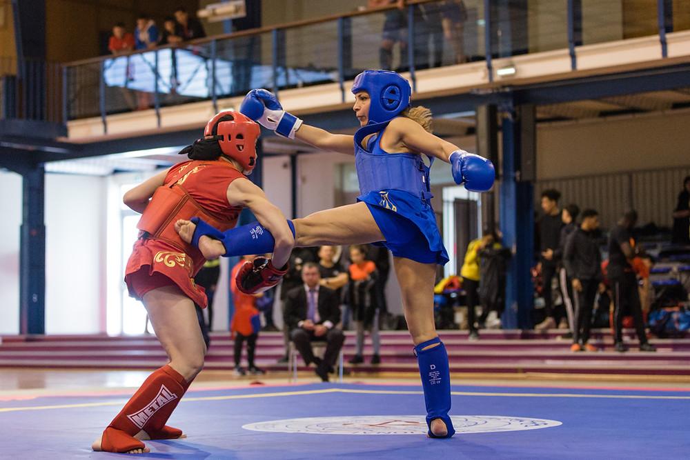 Le Pôle de Thérapeutes sera au Championnat de Normandie de Kung Fu 2019