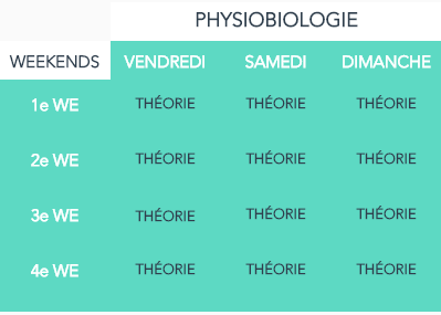 ORGANISATION cylce physiobiologie.png