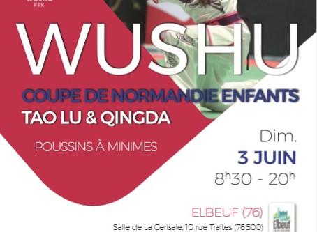 Nouvelle compétition avec la Fédération Normande de Wushu