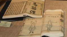 Enseignement du Ji Jin Jing (Etirements des méridiens tendino-musculaires) dans la formation acupuncture du Pôle de Thérapeutes