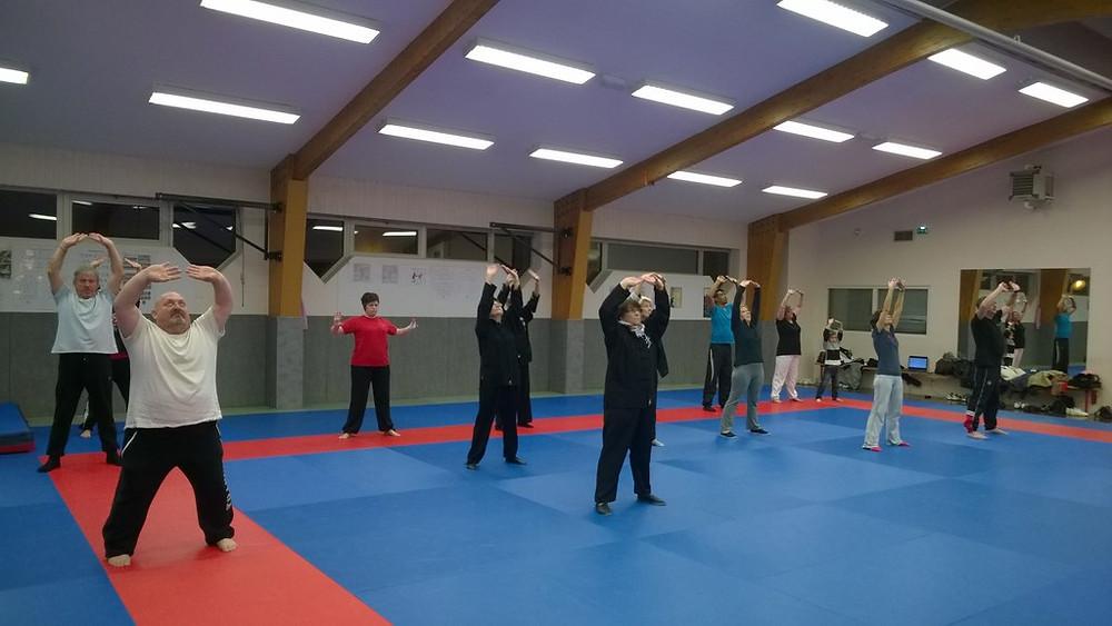 Tai Chi et Kung Fu pour tout âge sont proposés à Cléon par l'association Esprit & Combat Cléonnais