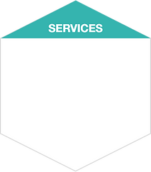 Services_category.png