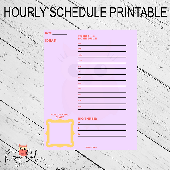 Hourly Schedule Printable   Digital Download   Daily Planner Sheet