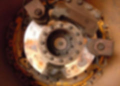 Komatsu untreated at 2 months - Copy.jpg