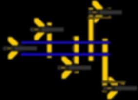 kult kress cultivator module 5 tooth.png
