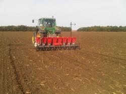 JJ Broch Garlic Planter