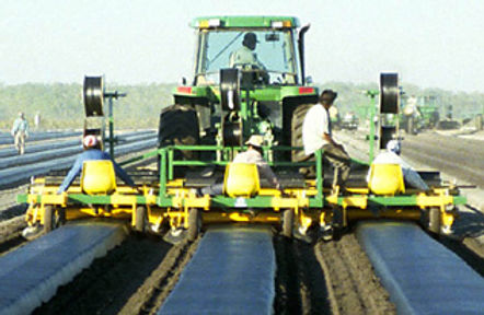 Kennco plastic-mulch-layer.jpg