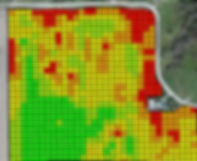 Ag Leader Yield Monitoring and Mapping System