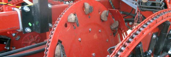 Planteur de pommes de terre à pince Harriston - Haute précision et vitesse élevée