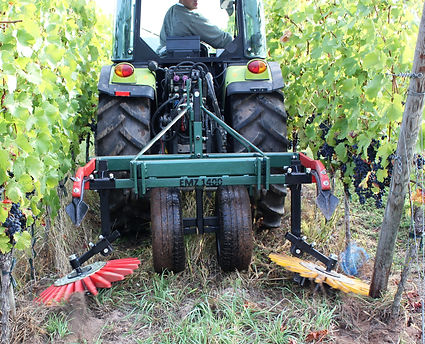 Kult Kress Fingerweeder Vineyard 4.jpg