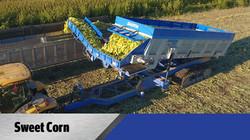 Crop Shuttle Sweet Corn