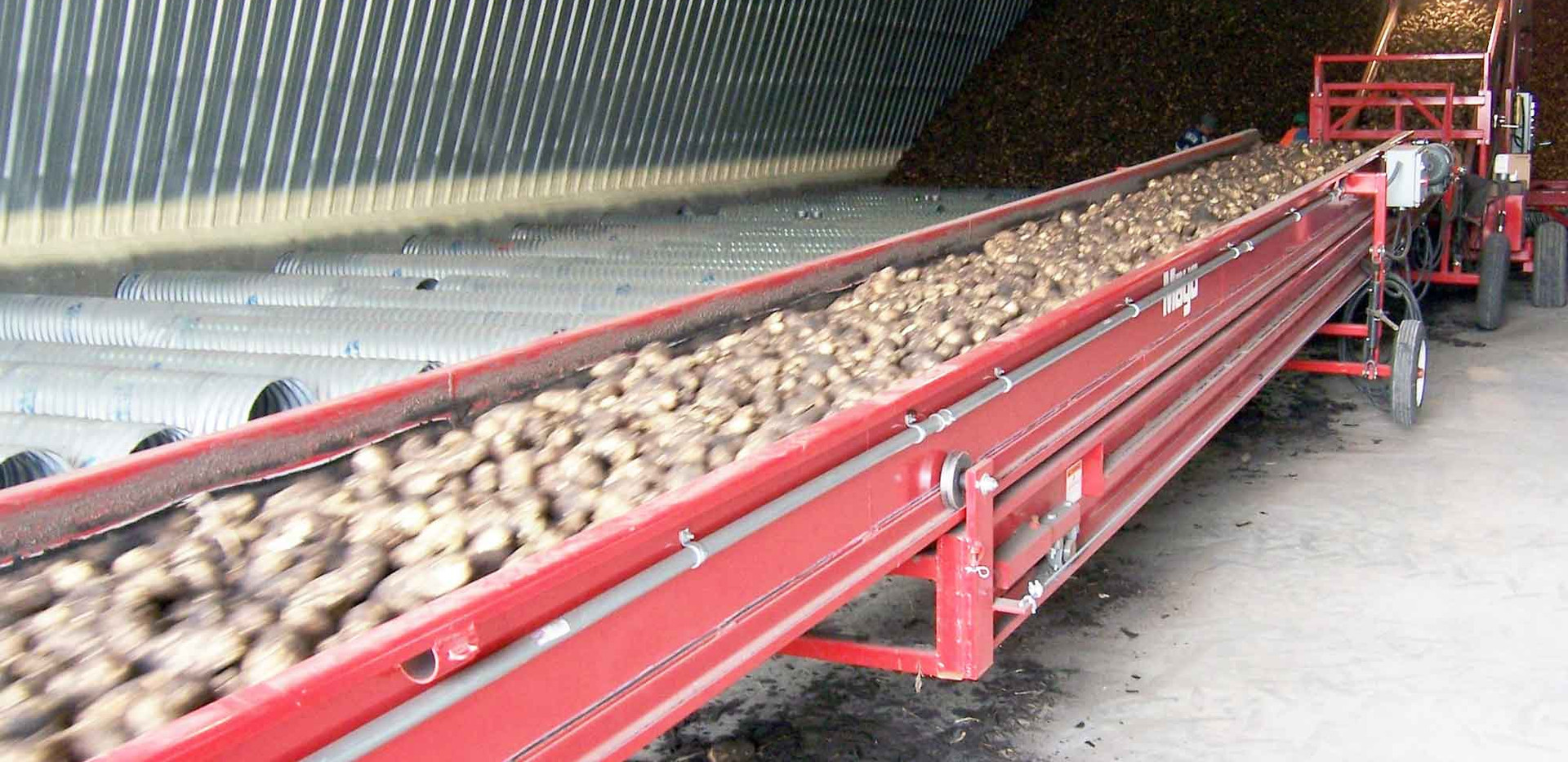 Mayo Telescopic Potato and Vegetable Crop Conveyors