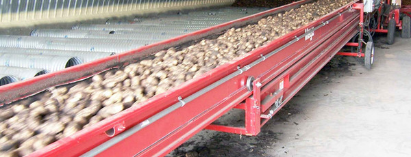 Convoyeurs télescopiques de pommes de terre et de légumes Mayo