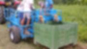 Europa K600 - Potato Harvester For Small Scale and CSA Farms - Ontario, Canada