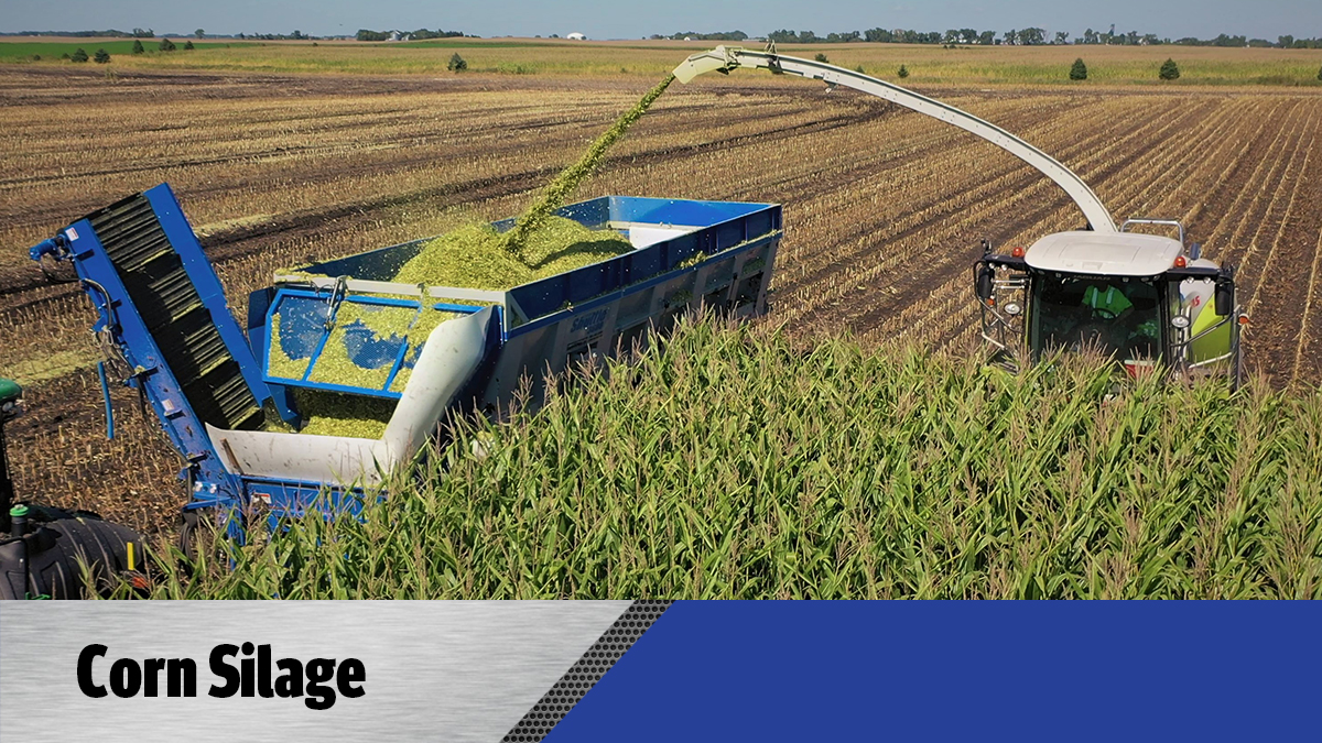 Crop Shuttle Silage