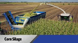 Crop Shuttle Silage