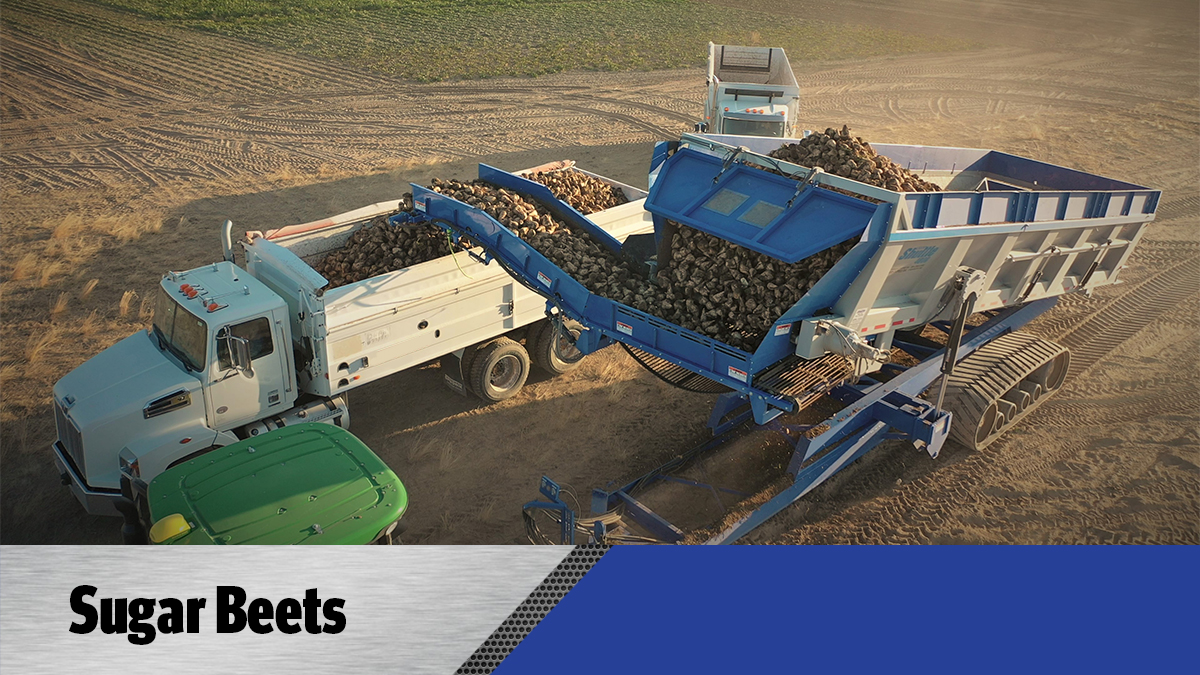 Crop Shuttle Sugar Beets