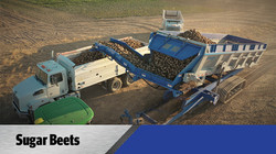 Crop Shuttle Sugar Beets