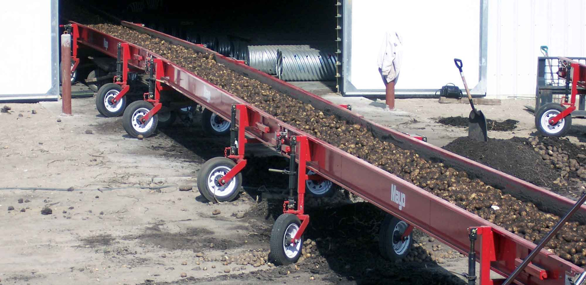 Mayo Butt Potato and Root Crop Conveyors