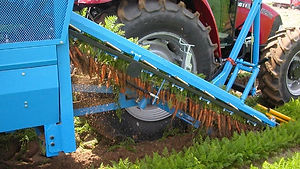 Europa CF300 Carrot Harvester For Smaller Farms - Ontario - Northern Equipment Solutions