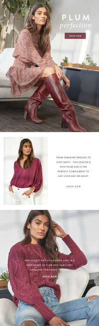 Email Design: Plum Color Story