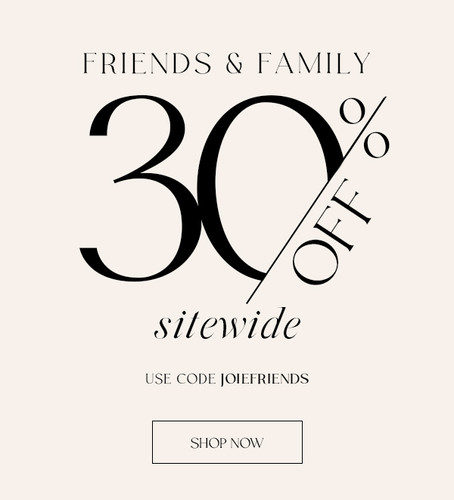 Email Design: Friends and Family Sale