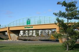 Run for Hope – Moved to Paul Bunyan Trail