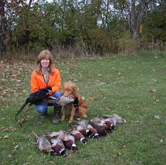 mini-Jack 09 appr hunt pheasants.jpg