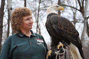 raptor-eagle.JPG