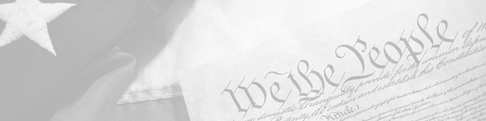 the constitution header.png