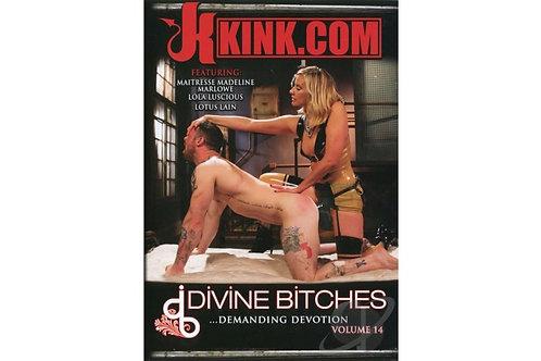 Divine Bitches Vol: 14