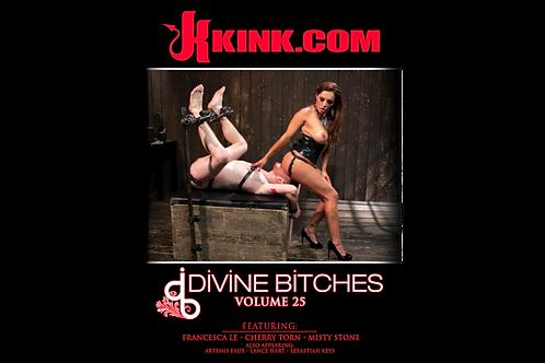 Divine Bitches Vol: 25