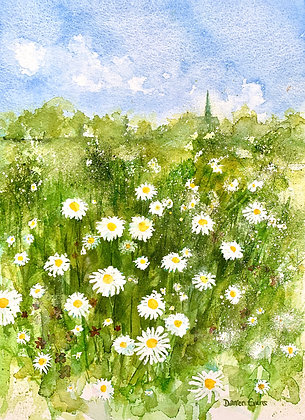 Daisies on the Green - Print