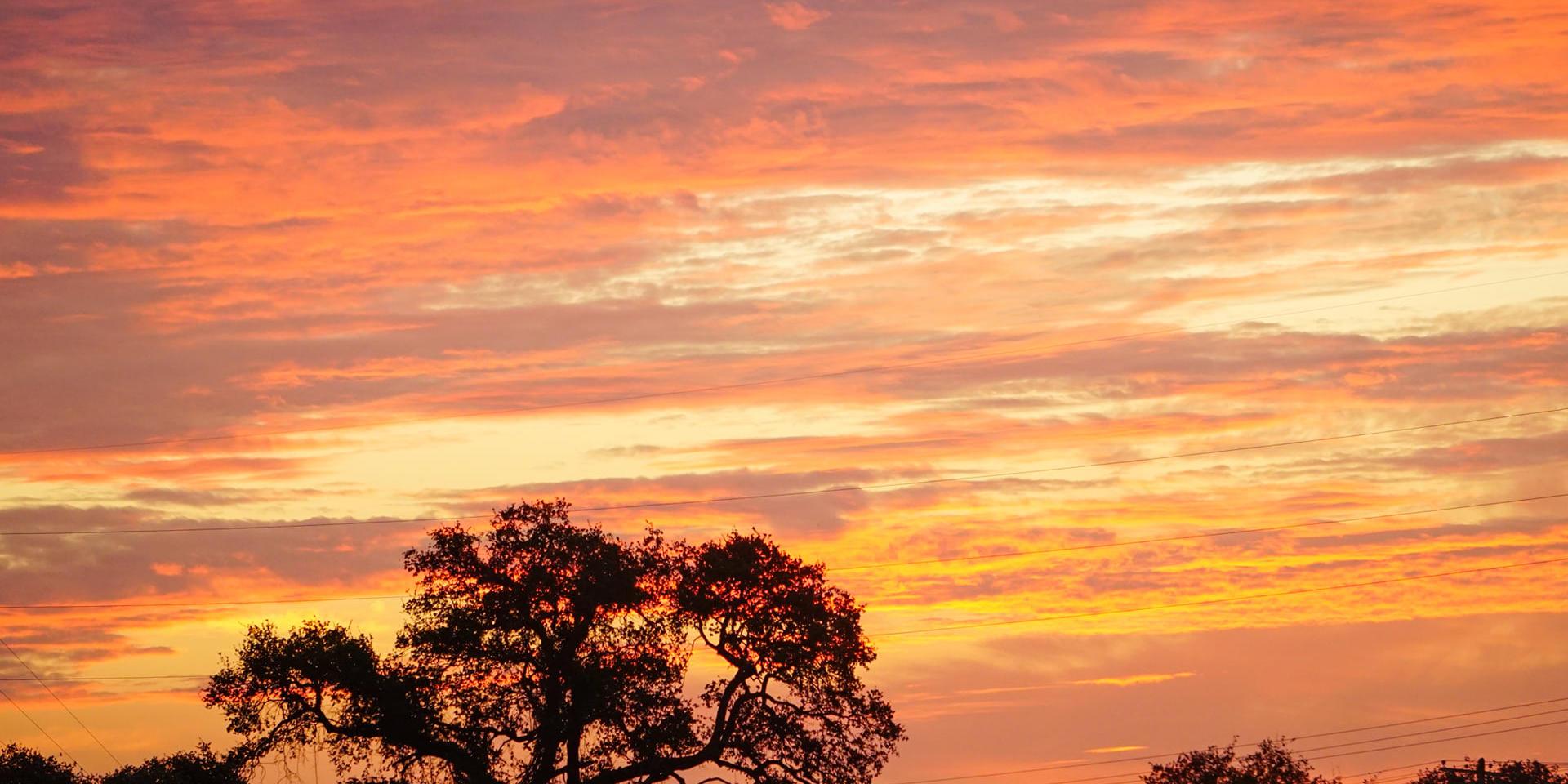 Morning Prayer and Psalms 5