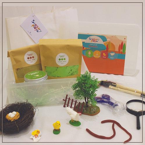 SensoryPlay Box - Chicken