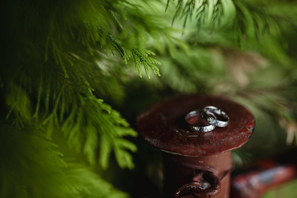 svatba svatební prstýnky