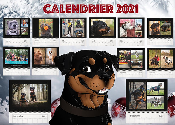 Calendrier Gueules d'Anges 2021 (version Rottweiler)